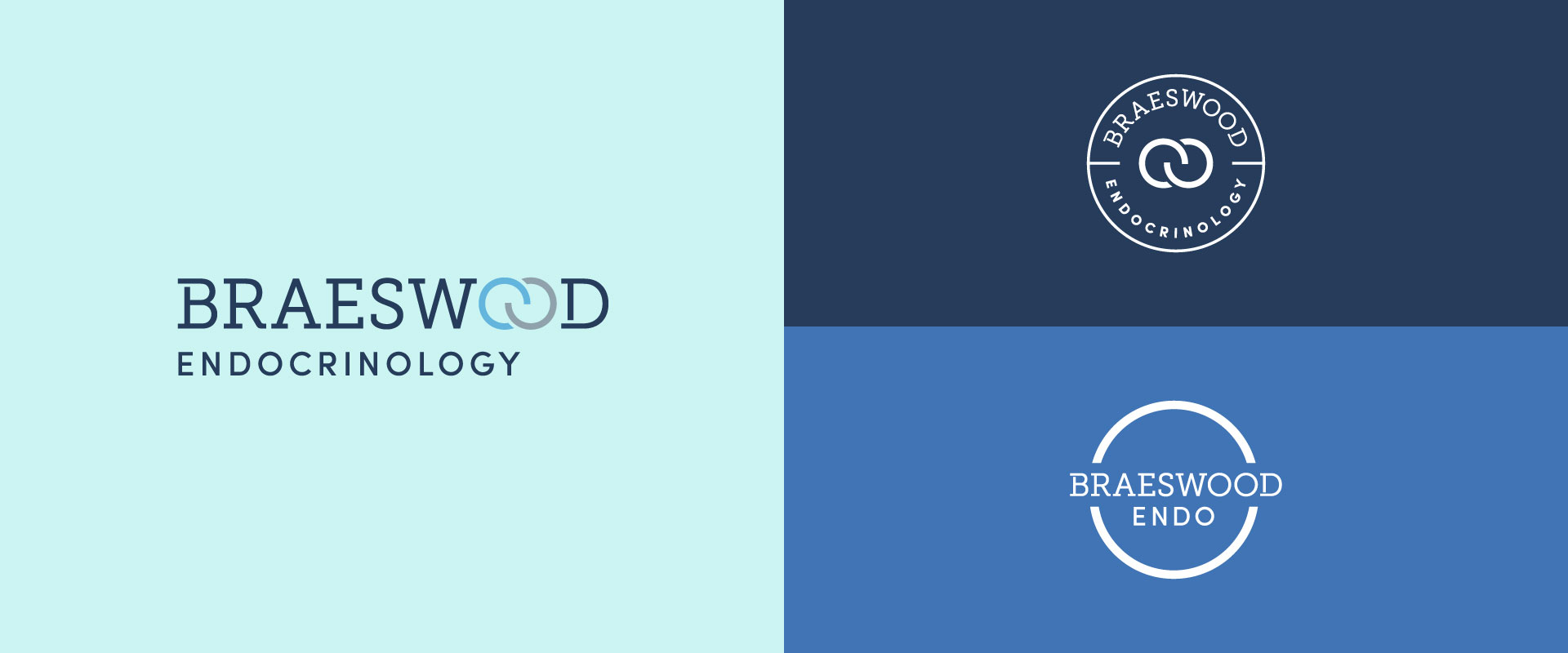 Braeswood Endocrinology medical practice logos
